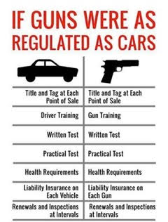 guns versus driver's license