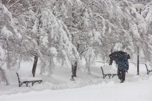 winter SU
